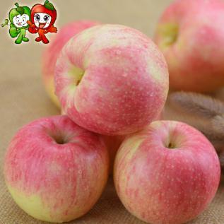 2015山东特产 烟台栖霞大帽顶嘎啦苹果 五斤装