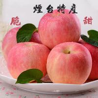 烟台栖霞红富士苹果80# 5斤